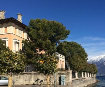 Palazzo_Lago